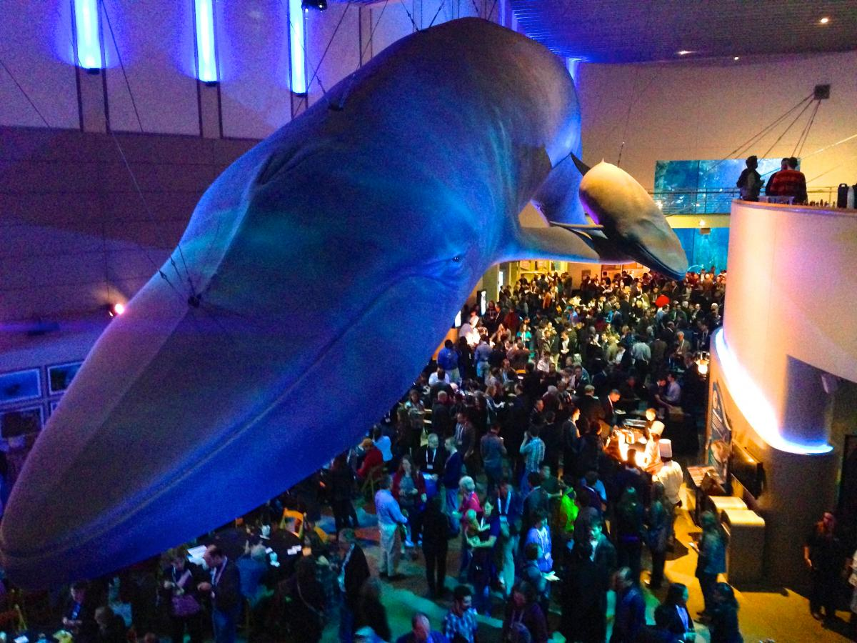 Astronomers, astrophysicists, educators, and students gather in the Long Beach Aquarium for the opening reception. Photo by Jill Pestana