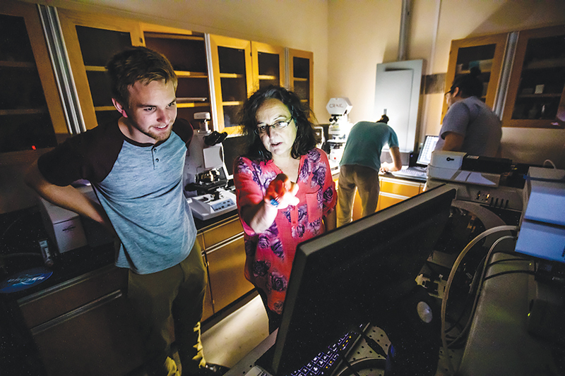 Physics professor Mariana Sendova instructs student Jay Mosher on conducting vibrational analysis of Raman spectra. Photo courtesy of New College of Florida.