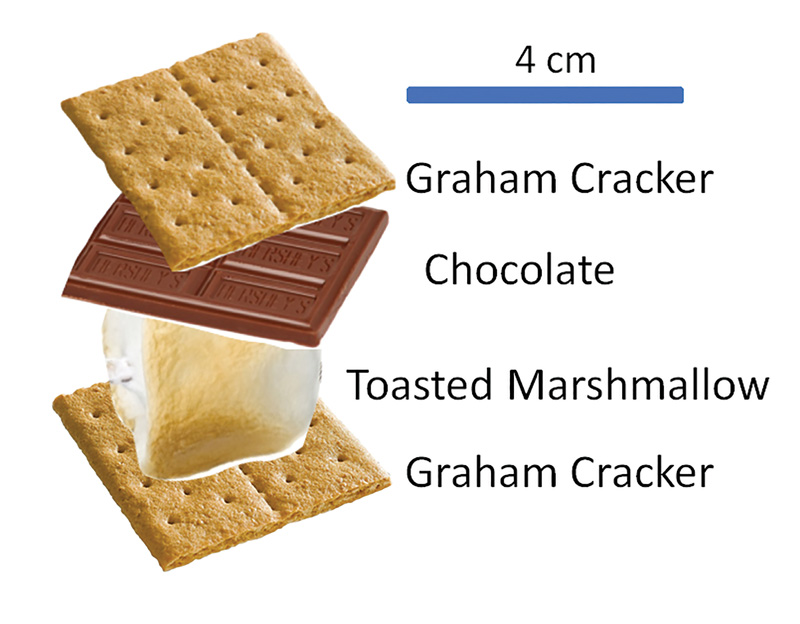 Figure 1. An ideal, nonspherical s'more with a toasted marshmallow and a piece of chocolate sandwiched between two pieces of graham cracker.
