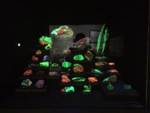 Some glow in the dark rocks at the Natural History Museum